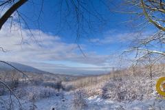 Winter im Saupark