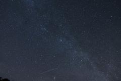Nachts iim Wildpark Schorfheide